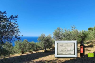 The special gift - sponsorship of an organic olive tree in Italy